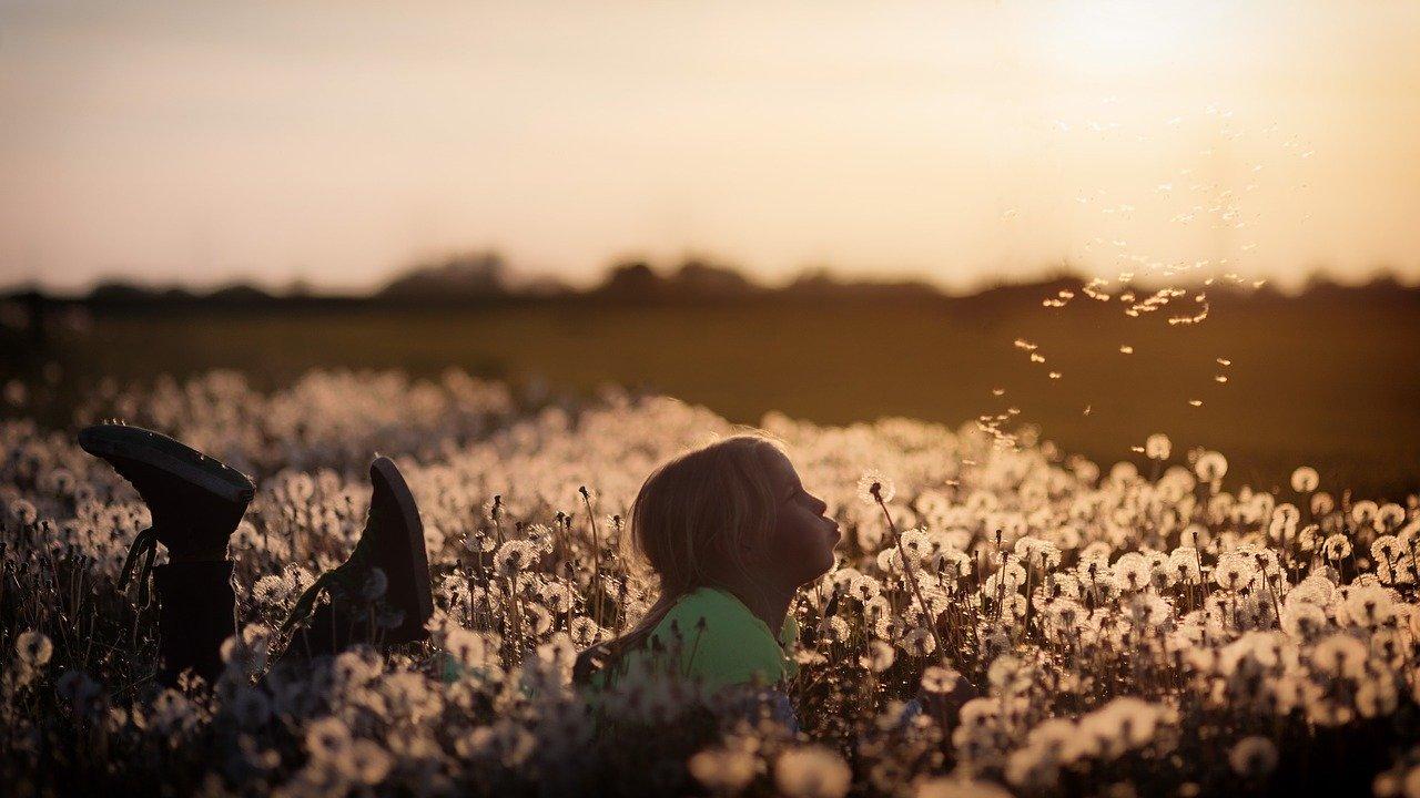 flowers, child, girl